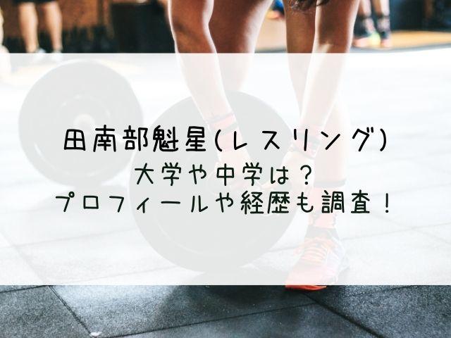 田南部魁星(レスリング)