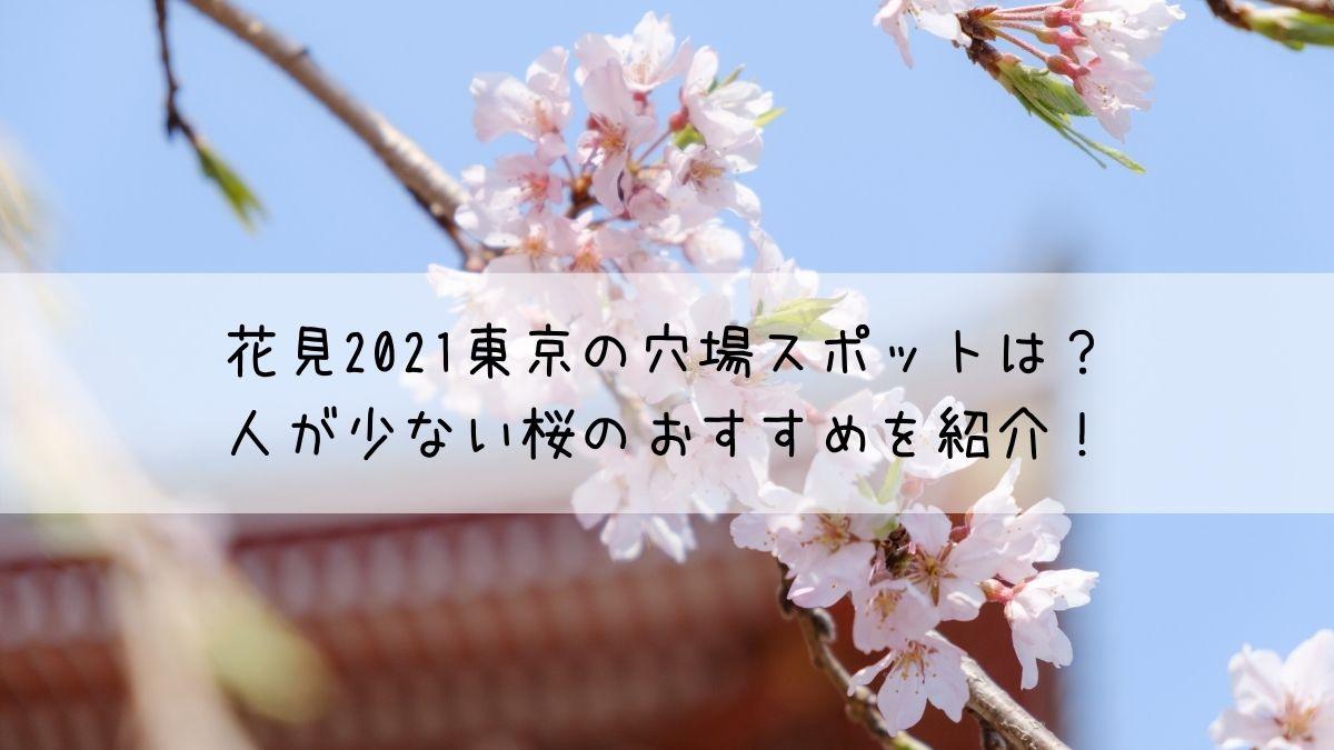 花見2021東京の穴場スポットは?人が少ない桜のおすすめを紹介!